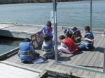 The other half of the day was spent rotating through the five Estuary Chesapeake Stations. At Station 1: About Crabs, students discuss anatomy, diet, behavior, sex identification, and habitat of blue crabs, and then try three methods of catching crabs.