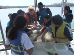 At Station 3: Oyster Bar Community, students observe, sort, and identify organisms living in the benthic oyster bar community.