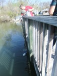 At Station 4: Investigating Plankton, students do a plankton tow to collect a sample containing plankton.