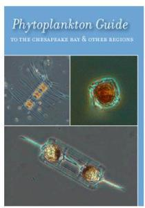 Phytoplankton guide SERC image
